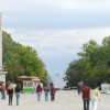 900 trees and 13 000 bushes will be planted in Varna