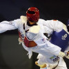 16 medals for bulgarian Taekwondo team