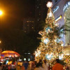 Over 20 Christmas trees glow in the center of Sofia