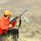 5,5 million leva income from hunting tourism