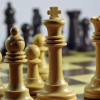 Grand chess master Kiril Georgiev second in Barcelona