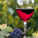"""""""Winery 2009"""" opens in Plovdiv"""