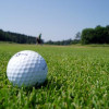 Golf field in the Borisova garden - soon