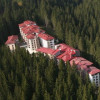Half of the hotels in Pamporovo - working