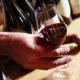 Spanish businessmen interested in producing wine near Pleven