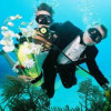 The first underwater wedding in Bulgaria took place near Kiten