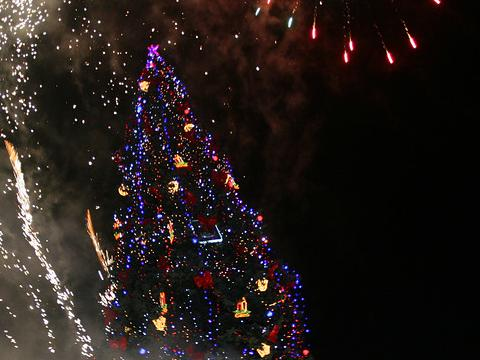 The Christmas tree of Sofia shines