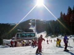 Stars on the opening of the ski season in Bansko