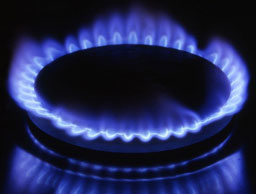 Bulgaria ready to purchase 2,5 billion cubic m. natural gas from Turkmenistan